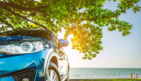 Blue sports car parked under the shade of the tree facing a beach